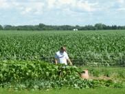 Ed checking out his garden